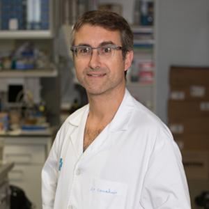 Dr. Jordi Sanahuja Montesinos